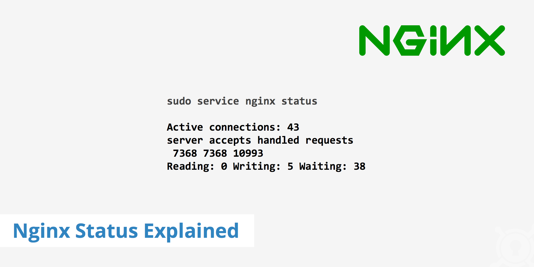 Nginx Status Explained